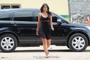 Bindu Madhavi Hot Spicy Pics