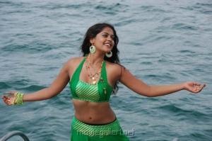 Telugu Actress Bindu Madhavi Hot Photos