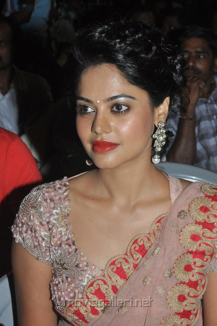 Bindu Madhavi Latest Stills in Pink Net Saree