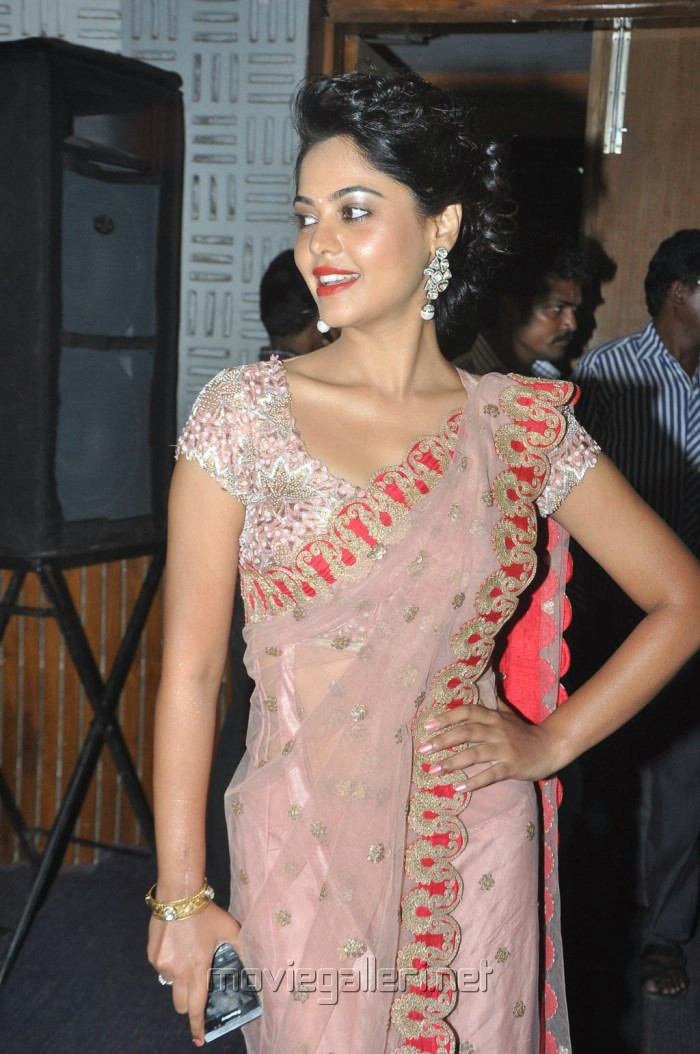 Actress Bindu Madhavi in Pink Net Saree Stills