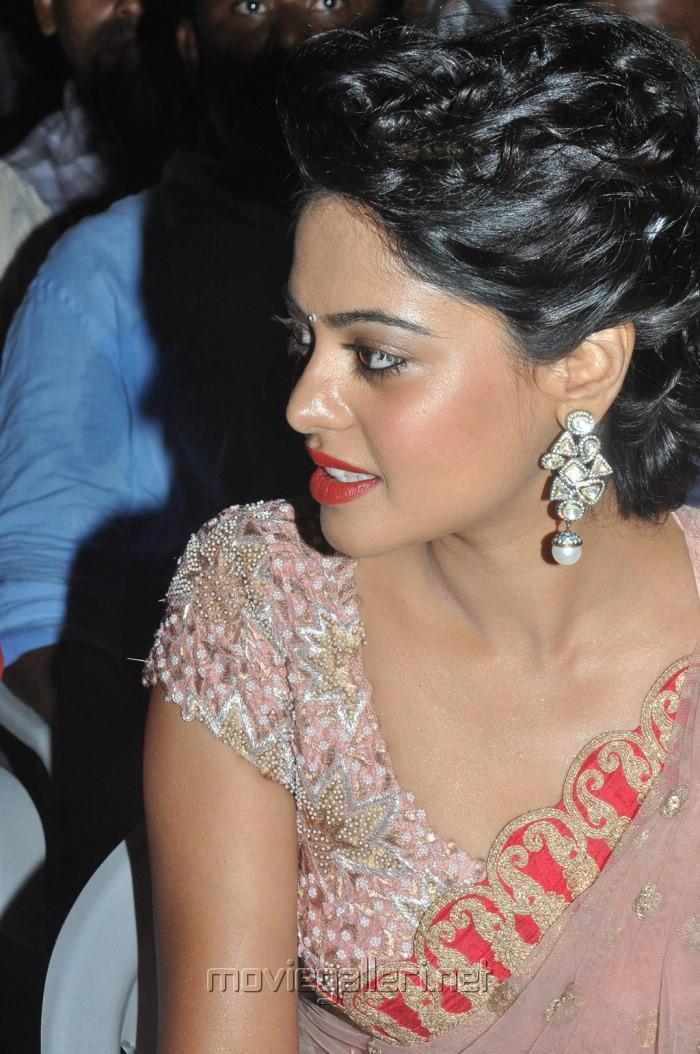 Actress Bindu Madhavi in Pink Netted Saree Stills