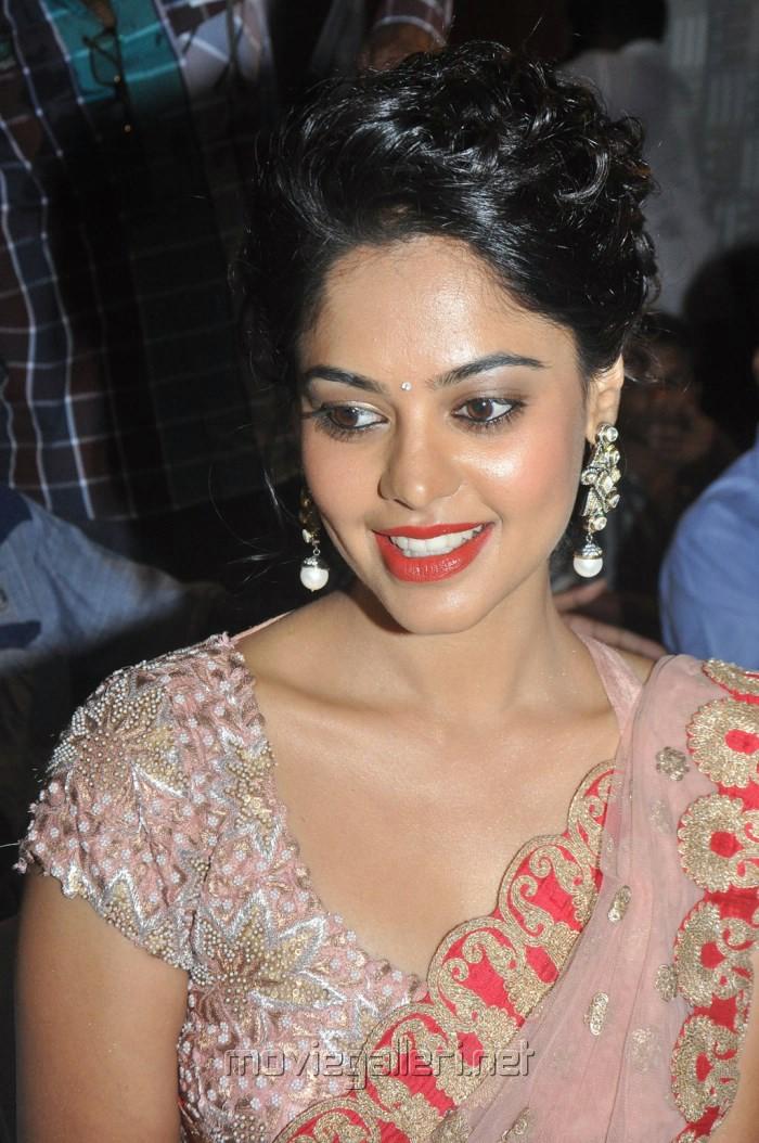 Actress Bindu Madhavi Latest Stills in Pink Netted Saree