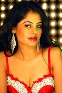 Bindu Madhavi Hot Stills Photos Gallery