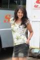 Actress Bindu Madhavi in Pilla Zamindar