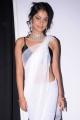 Bindu Madhavi Saree Hot Pics