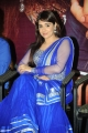 Mandy Takhar @ Biriyani Movie Audio Launch Stills