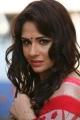 Actress Mandy Takhar in Biriyani Movie Latest Stills
