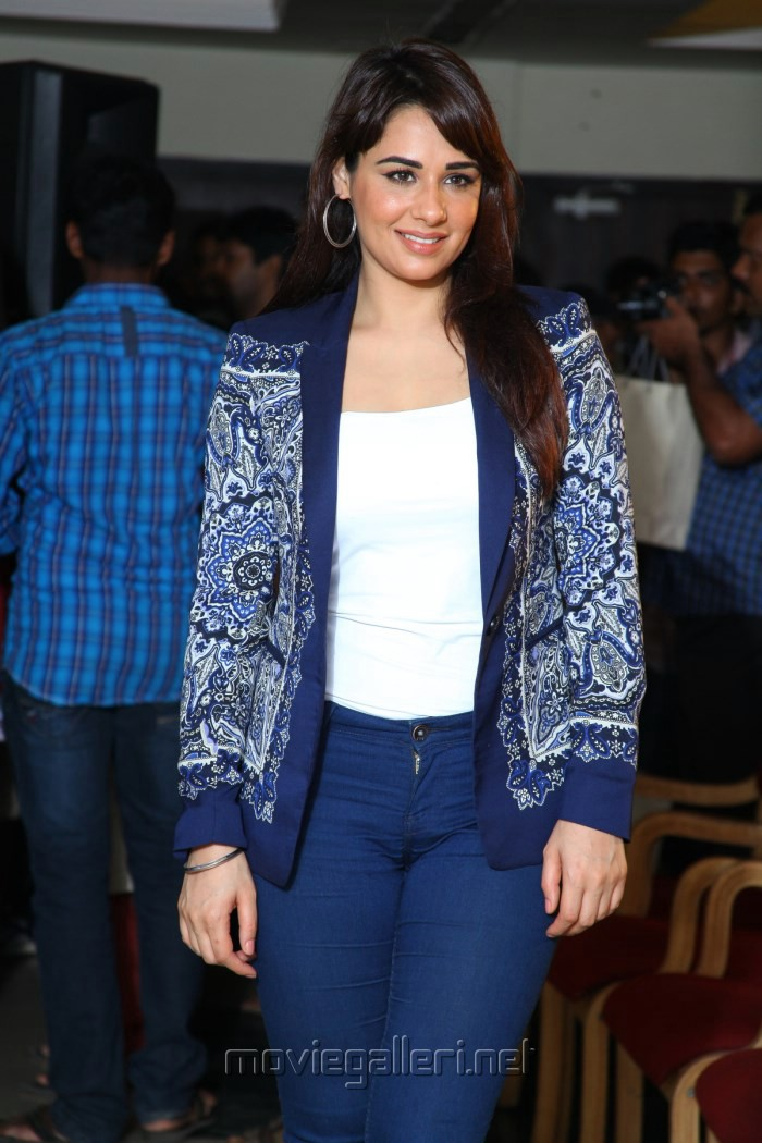 Actress Mandy Takhar @ Biryani Movie Cochin Press Meet Stills