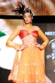 Blenders Pride Fashion Tour 2011 Stills