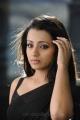 Bodyguard Trisha Black Saree Hot Stills