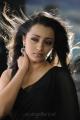 Trisha Hot in Bodyguard Stills