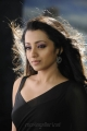 Trisha Hot in Black Saree Photos