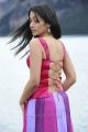 Bodyguard Trisha Hot Images