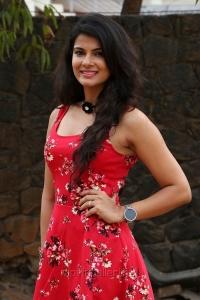 Actress Manisha Shree @ Bongu Movie Team Meet Photos