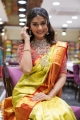 Actress Payal Rajput @ Brand Mandir Wedding Saree Collection Launch Photos
