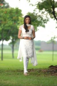 Brindavanam Kajal Agarwal Cute Churidar Stills