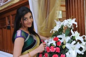 Actress Kajal in Saree Wallpapers