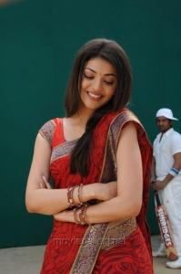 Telugu Actress Kajal Hot in Saree Stills
