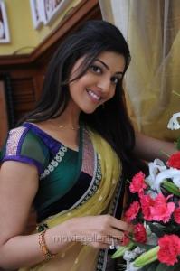 Brindavanam Actress Kajal Hot Saree Stills