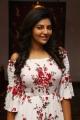 Actress Athulya Ravi @ Capemari Movie Press Meet Stills