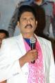 Harinath Policharla @ Captain Rana Pratap Audio Launch Stills