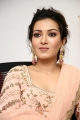 Actress Catherine Tresa Cute Photos @ Aruvam Press Meet