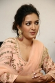 Actress Catherine Tresa Cute Photos @ Aruvam Movie Press Meet