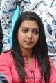 Telugu Actress Actress Catherine Tresa Stills