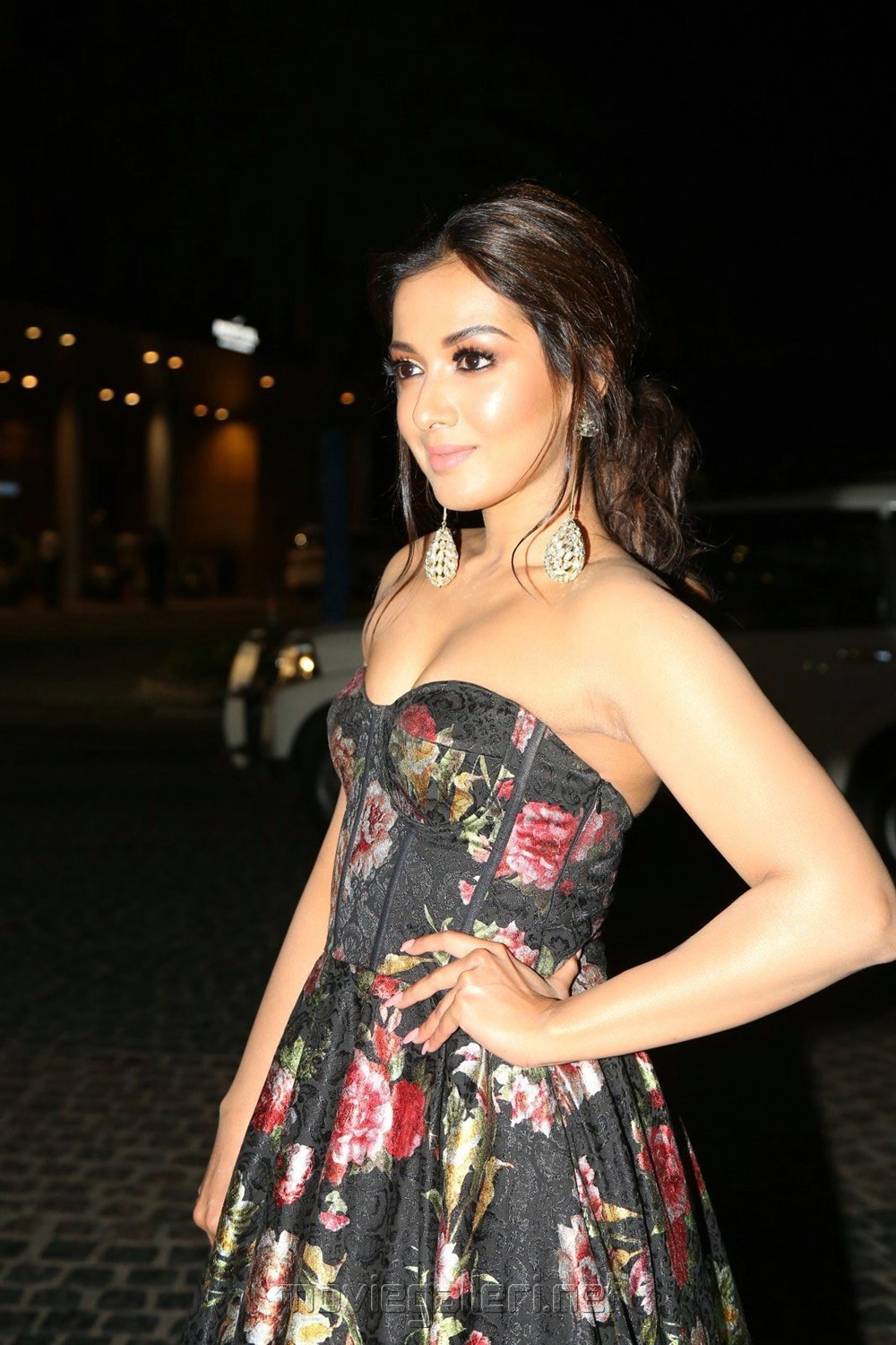 Actress Catherine Tresa Hot Photos @ 65th Jio Filmfare Awards (South) 2018