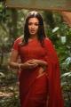 Naga Kanya Actress Catherine Tresa Red Saree Images HD