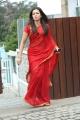 Naga Kanya Actress Catherine Tresa in Red Saree Images HD