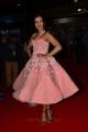 Telugu Actress Catherine Tresa Pics @ Filmfare Awards 2017 South Red Carpet