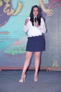Actress Catherine Tresa @ Sarainodu Movie Success Meet Photos