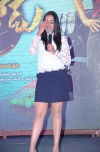 Actress Catherine Tresa Photos @ Sarainodu Success Meet