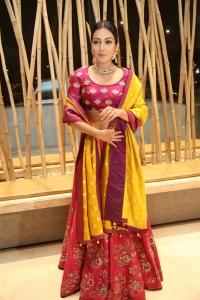 World Famous Lover Movie Actress Catherine Tresa Photos