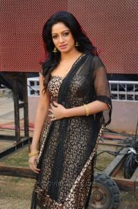 Udhaya Banu Hot Pics in CCL 2 Match