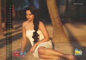 February 2012 Sonakshi Sinha Hot CCL Calendar Stills