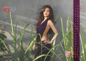 July 2012 Riya Sen Hot CCL Calendar Stills