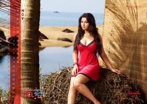 November 2012 Richa Gangopadhyay Hot CCL Calendar Stills
