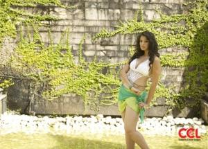 Lakshmi Rai @ CCL 2012 Calender Hot Spicy Stills