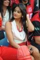 Hot Actress in Telugu Warriors vs Bengal Tigers