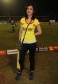 Akshara Hassan at CCL 3 Chennai Rhinos Vs Karnataka Bulldozers Match Photos