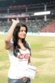Priyamani at CCL 3 Final Telugu Warriors Vs Karnataka Bulldozers Match Photos