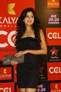 Poonam Kaur at CCL Season 3 Curtain Raiser Photos