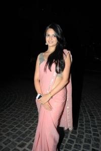 58th Idea Filmfare Awards 2010 South