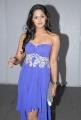 Actress Karthika Nair at Southspin Fashion Awards 2012 Stills