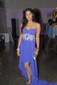 Karthika Nair at South Spin Fashion Awards 2012 Stills