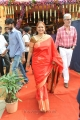 Jayasudha @ Balakrishna Second Daughter Marriage Pics