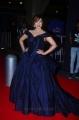 Actress Payal Ghosh @ 64th Filmfare Awards South 2017 Red Carpet Photos