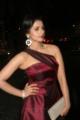 Actress Shruti Hariharan @ 64th Filmfare Awards South 2017 Red Carpet Photos